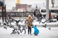 Первый снег, 2.12.2014, Фото: 33