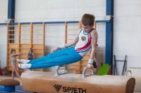 Мужская спортивная гимнастика в Туле, Фото: 7