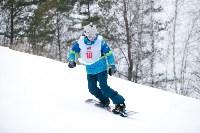I-й этап Кубка Тулы по горным лыжам и сноуборду., Фото: 80