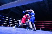 В Туле прошли финальные бои Всероссийского турнира по боксу, Фото: 112