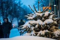 Тулу замело снегом, Фото: 8