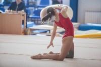 Первенство ЦФО по спортивной гимнастике, Фото: 52