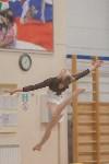 Первенство ЦФО по спортивной гимнастике, Фото: 200