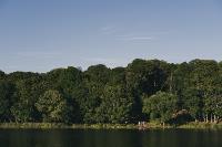 Летний день в богородицком парке, Фото: 31
