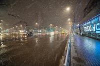 Апрельский снегопад - 2021, Фото: 114