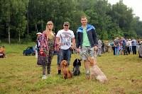 Выставка охотничьих собак под Тулой, Фото: 5