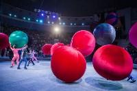 Туляков приглашают на новогоднее представление «Ёлка в цирке», Фото: 52