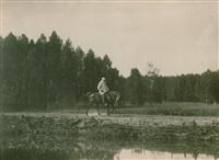 Толстой покупал березы на гонорар от «Войны и мира», Фото: 13