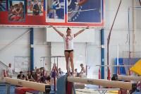 Тульские гимнастки готовятся к первенству России, Фото: 56