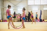 Открытый кубок региона по художественной гимнастике, Фото: 53