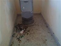 Невыносимые условия в доме №15 по улице Хворостухина, Фото: 11
