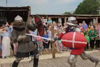 В Туле прошел народный фестиваль «Дорога в Кордно. Путь домой», Фото: 150