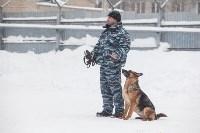 """""""Студенческий десант"""" - 2017., Фото: 9"""