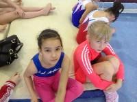 Туляки на соревнованиях по спортивной гимнастике в Брянске., Фото: 26
