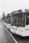 Новые низкопольные автобусы, Фото: 3