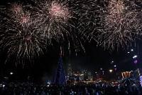 Открытие городской ёлки-2016, Фото: 4