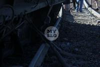 В Тульской области грузовой поезд сошел с рельсов, Фото: 4