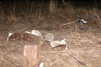 В жутком ДТП в поселке Рассвет погиб пассажир Audi A6, Фото: 20