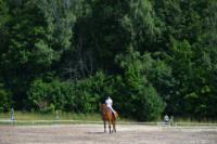 В Ясной поляне стартовал турнир по конному спорту, Фото: 110