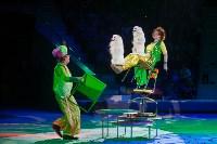 """""""Тайна пирата"""" в Тульском цирке, Фото: 96"""