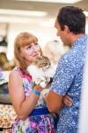 """Выставка """"Пряничные кошки"""". 15-16 августа 2015 года., Фото: 2"""
