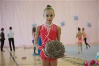IX Всероссийский турнир по художественной гимнастике «Старая Тула», Фото: 1