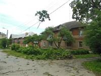Ураган в Плавске, Фото: 9