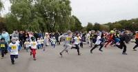 В Тульской области прошёл «Кросс нации-2016», Фото: 46