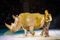 Туляков приглашают на новогоднее представление «Ёлка в цирке», Фото: 65