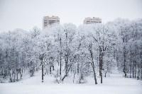 Темная сторона Платоновского парка, Фото: 9