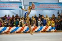 Открытый кубок региона по художественной гимнастике, Фото: 31