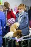 Выставка собак в Туле 14.04.19, Фото: 12