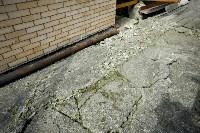 В Дедилово из-за старых шахт рушатся дома, Фото: 21