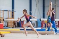 Тульские гимнастки готовятся к первенству России, Фото: 9