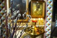 Вербное воскресенье 2020: тульские храмы опустели, Фото: 22