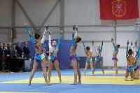 В Туле открылся турнир по дзюдо на Кубок губернатора региона, Фото: 19