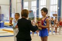 Спортивная гимнастика в Туле 3.12, Фото: 49