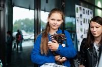 Благотворительный фестиваль помощи животным, Фото: 27