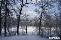 Зимняя сказка Платновского парка, Фото: 8