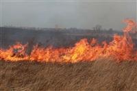 """Возгорание сухой травы напротив ТЦ """"Метро"""", 7.04.2014, Фото: 31"""
