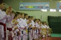 Открытое первенство и чемпионат Тульской области по сётокану, Фото: 6