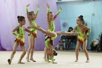 Соревнования «Первые шаги в художественной гимнастике», Фото: 69