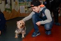 Выставка собак DogLand, Фото: 30