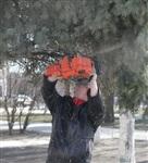 Субботник в Комсомольском парке с Владимиром Груздевым, 11.04.2014, Фото: 22