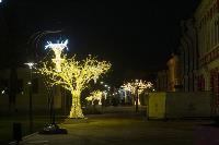 Тулу начали украшать к новому году, Фото: 20