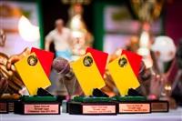 Церемония награждения любительских команд Тульской городской федерацией футбола, Фото: 10
