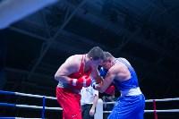 В Туле прошли финальные бои Всероссийского турнира по боксу, Фото: 119
