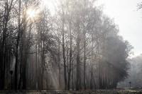 Ледяное утро в Центральном парке, Фото: 35