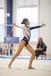 Спортивная гимнастика в Туле 3.12, Фото: 169