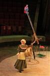 Цирк «Вива, Зорро!» в Туле , Фото: 12